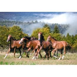 Пъзел - Wild Horses