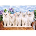Пъзел - Blue-Eyed Kittens