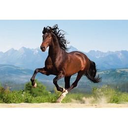 Пъзел - Galloping Andalusian