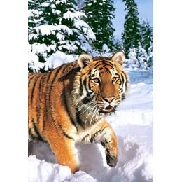 Пъзел - Winter Syberian Tiger