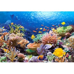 Пъзел - Coral Reef Fishes