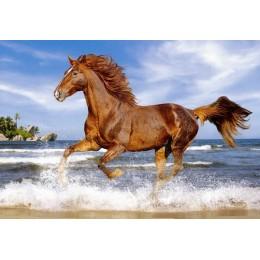 Пъзел - Horse on the beach