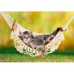 Пъзел - Kitten in Hammock