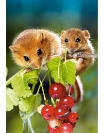 Пъзел - Hazel Mouse with Cub