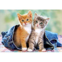 Пъзел - Two Kittens in Jeans