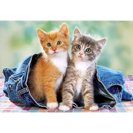 Пъзел - Two Kittens in Jeans
