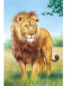 Пъзел - Lion