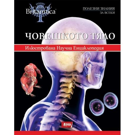 Човешкото тяло - 4 том