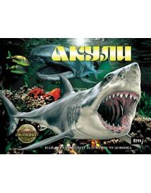 Акули: Най-страховитите плуващи чудовища