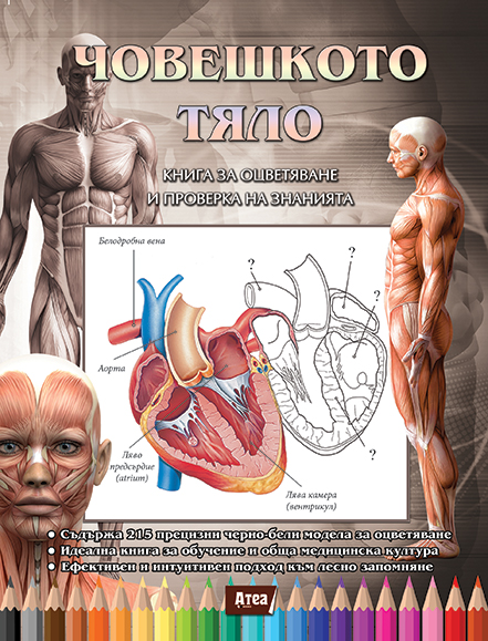Човешкото тяло: Книга за оцветяване и проверка на знанията за анатомия на човека